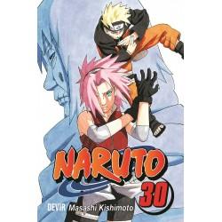 Naruto PT vol 31