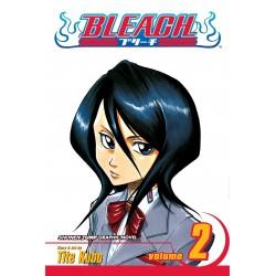 Bleach Vol.2