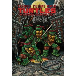 Teenage Mutant Ninja Turtles Art BooK
