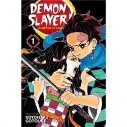 Demon Slayer vol 1