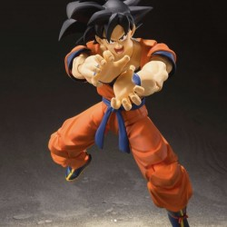 Son Goku Super Saiyan God S.H.Figuarts