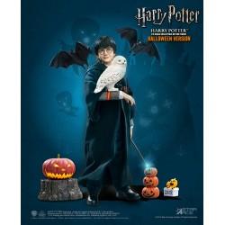 Harry Potter HARRY HALLOWEEN Star Ace Toys